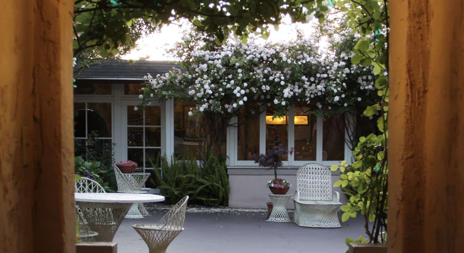 Courtyard with flowering vines and plants, and white patio chairs and tables