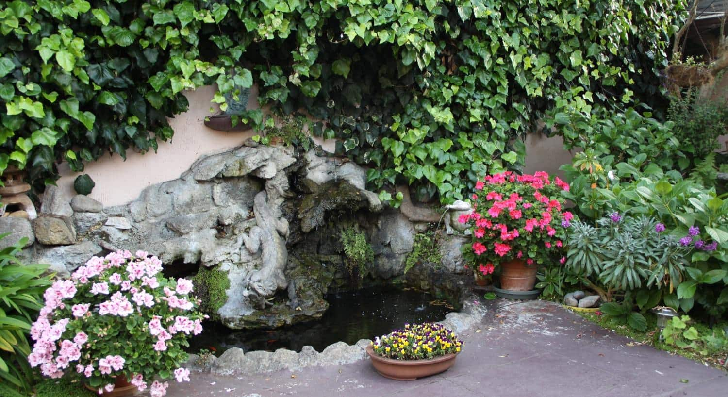 Flowering plants and green vines  around a water feature